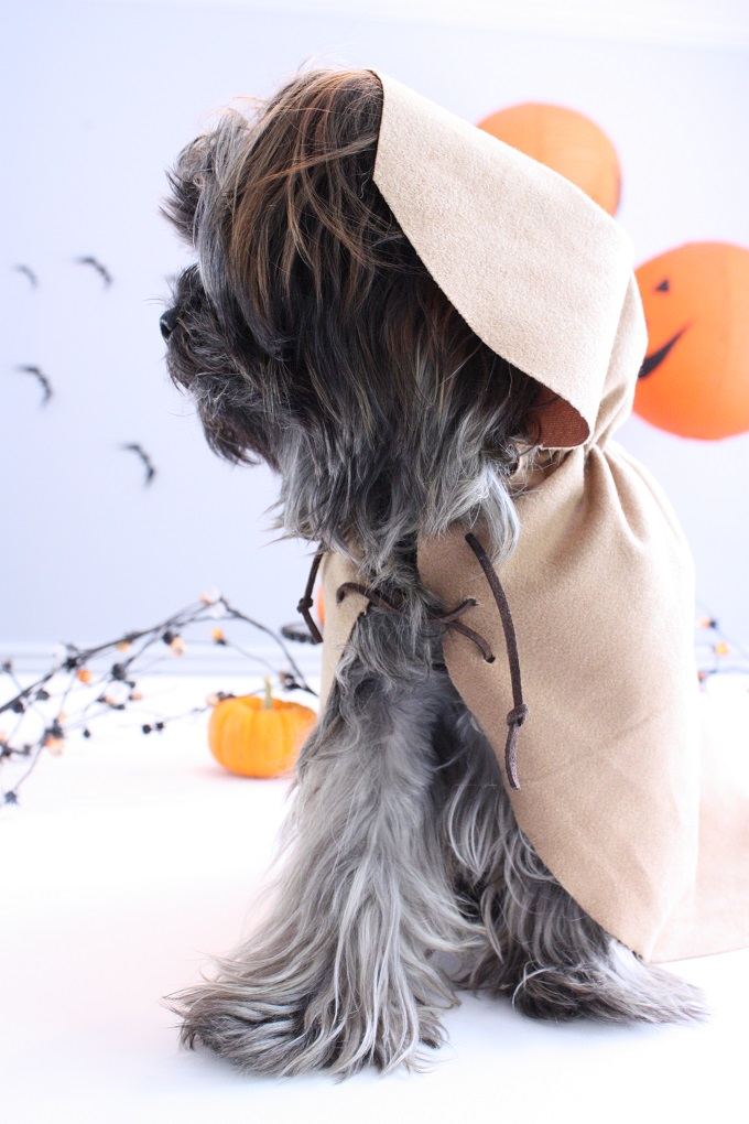 4-Ewok-Pet-Costume-Kim-Byers-6807-680