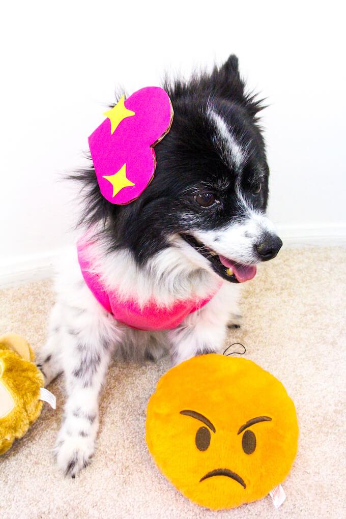 emoji dog costume