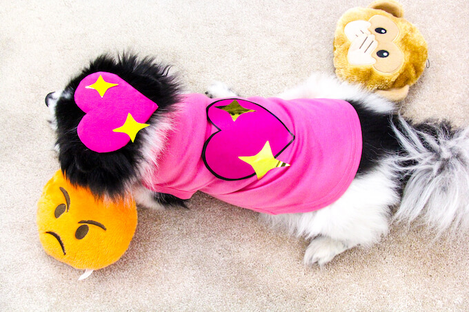 emoji dog costume