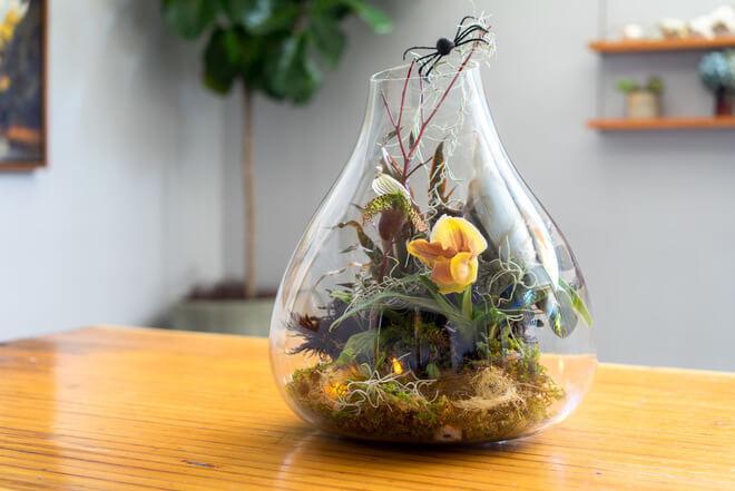 halloween terrarium