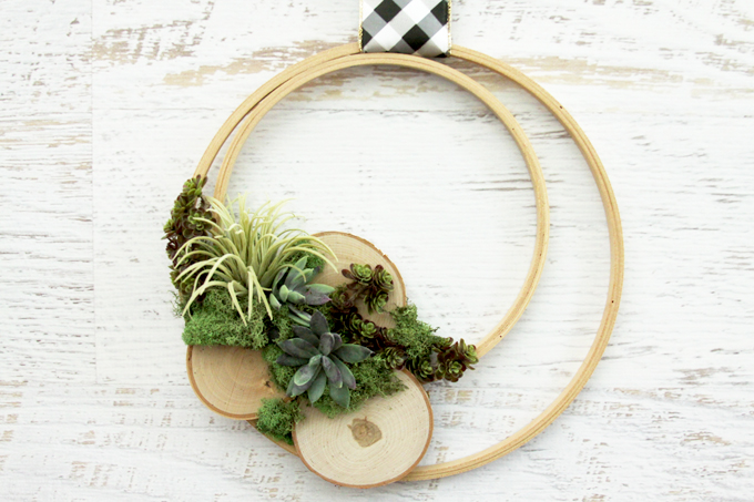 DIY Wooden Hoop Air Plant Wreath