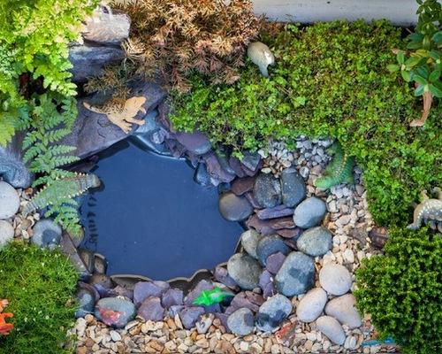 Dino Garden