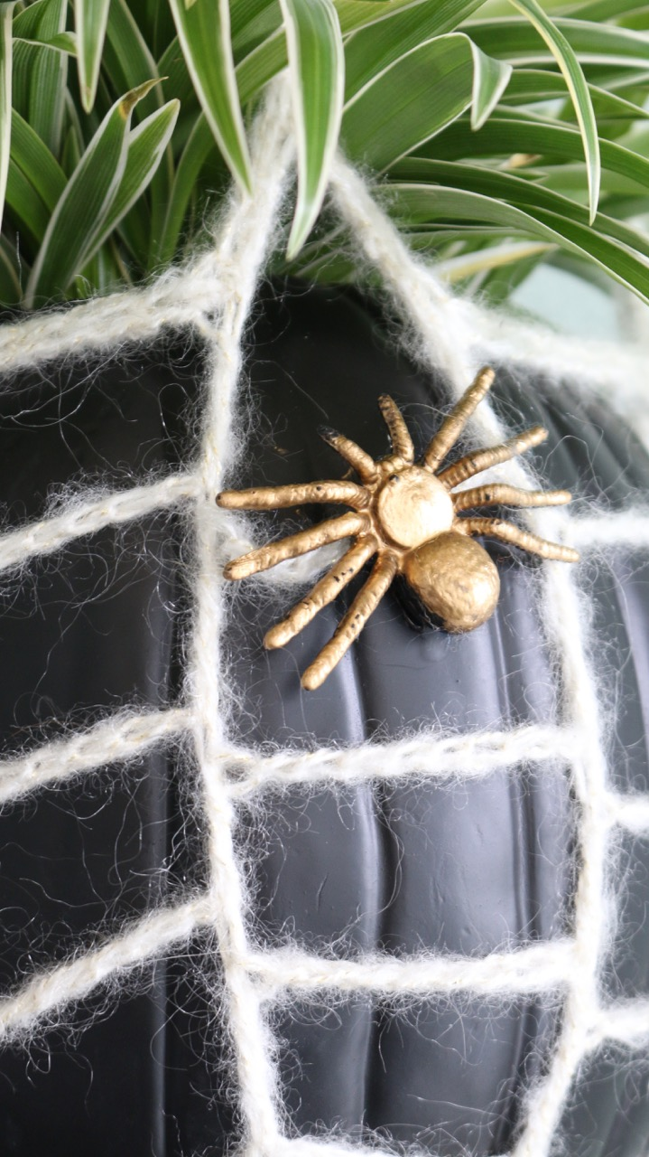 webbed hanging planter