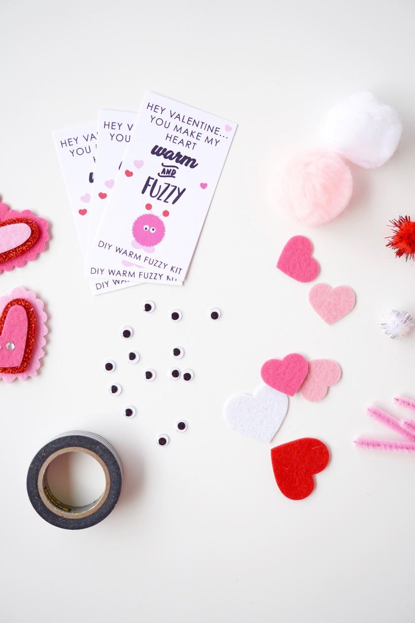 DIY warm Fuzzy Class Valentine